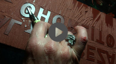 imagen-destacada-cabeza-de-chorlito-video